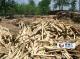 专业回收工地废旧木材,多层板